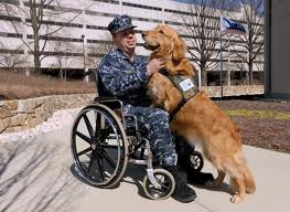 Feds To Provide Veterinary Medical Insurance For Veterans Service Dogs