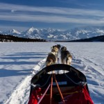 sled-view