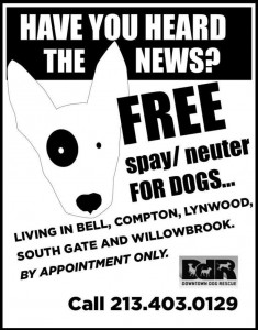 Free Spay and Neuter