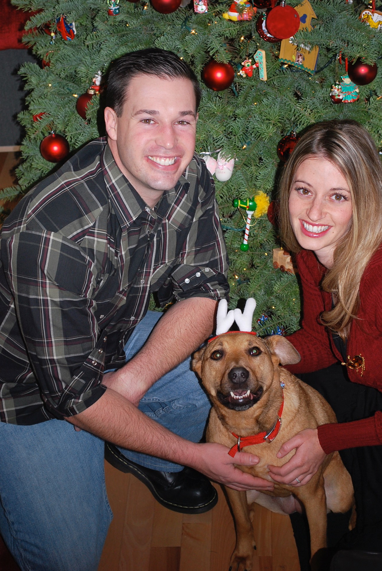 Angel Fund Supplies Clarity for Dog With Terminal Cancer
